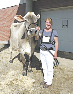 Component Merit Cow and three generations of Brown Swiss