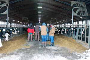 Improving cow comfort at Envision Dairy LLC