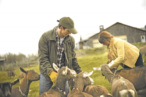 How to host a farm school for adults