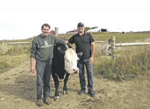 Palladino Farms excited to bring Empire Farm Days back home