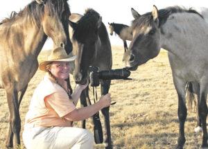 Horse Tales Carien Schippers: Equine photographer extraordinaire