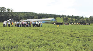 Dairy grazier showcases resiliency when Fred arrives
