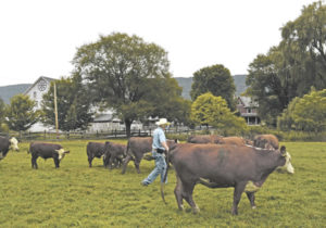The cattle business is people business
